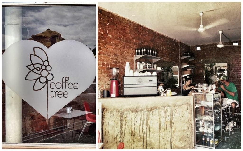 Coffee Tree Durban